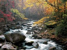 Little River, Tremont, Great Smokey Mountains National Park