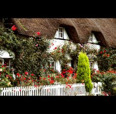 from an old English Village. Beautiful World, Beautiful Gardens, Beautiful Homes, Beautiful Places, English Country Cottages, English Village, Country Houses, Landscaping With Roses, Rose Nursery