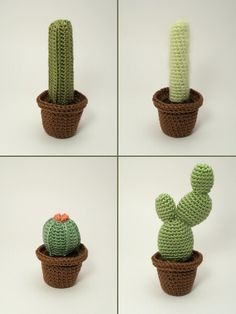Cactus Collections eight realistic PDF CROCHET by PlanetJune