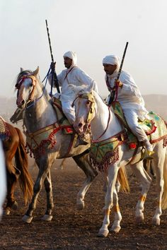 Arabian Costume, Horse Costumes, Morocco Travel, Moroccan Style, Character Design, Horses, Culture, Fine Art, Firearms