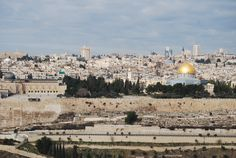 I loved everything about my trip to Israel