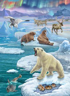NEW Diamond Embroidery full canvas painting diy diamond painting diamondGlacier landscape animal polar bear Polar Animals, Polar Bear, Animals And Pets, Baby Animals, Cute Animals, Animal Habitats, Animal Posters, Bear Art, Animal Projects