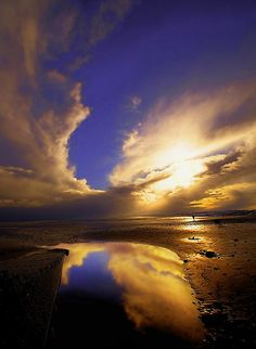 ~~Reflections by Svetlana Sewell ~ Yorkshire coast, Filey, UK~~