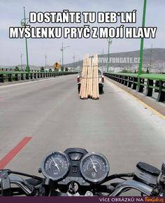 Funny Texts, Funny Jokes, Hilarious, Dead Memes, Dankest Memes, Epic Pictures, Some Jokes, Good Humor, Wholesome Memes