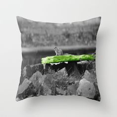 Squirrel Time in Green I Throw Pillow by Angelika Kimmig - $20.00