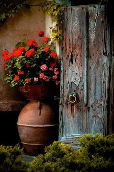 """Most Beautiful Antique Farmhouse And Vintage Front Doors Ideas For Home More Amazing Old Photograph - Still Life With Violin by Andrey Morozov """"Renegade Roses"""" Canvas Print by PhotoRover Farmhouse Front, Antique Farmhouse, Old Doors, Front Doors, Front Porch, Geraniums, Belle Photo, Painting Inspiration, Garden Inspiration"""