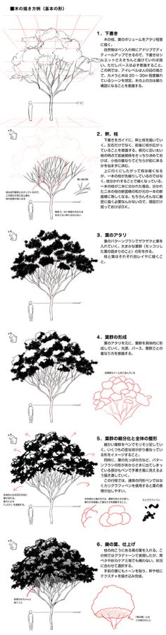 79 best How to Draw Realistic Trees, Plants, Bushes and Rocks images ...