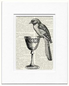 bird with goblet  -  vintage artwork printed on page from old dictionary