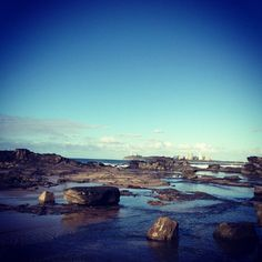 Check out my recent blog posts! #australia #blog #downunda #studyabroad #sunshinecoast