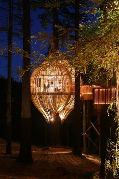 """Essa """"casa na árvore"""" é um verdadeiro convite para jantar fora. O projeto do restaurante Yellow Tree House, na Nova Zelândia, feito pela Pacific Environments Architects Ltd. (PEL), em meio à floresta, recebeu prêmios pelo mundo inteiro. Consiste em um casulo enxertado em uma sequóia de 40 metros de altura, o projeto é construído de ripas de álamo e faz uso intensivo de iluminação natural por toda parte."""