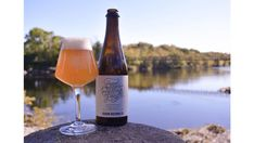 From Asheville to Cape Town to Shanghai, there's so much beer to celebrate around the world. View our list of the best beer cities to visit. Farmhouse Ale, Beers Of The World, Brew Pub, Beer Bar, Beer Garden, Best Beer, Beer Lovers, Craft Beer, Brewery