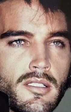 Elvis Presley Quotes, Elvis Presley Pictures, Elvis Presley Family, Elvis And Priscilla, Lisa Marie Presley, Jeanne Crain, Marilyn Monroe Photos, Graceland, Famous Faces