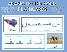 Arabic Alphabet Form Flashcards (Beginning, middle and end) - Includes words mentioned in the Quran- 29 letter flash cards with corresponding watercolor image flashcards The purpose of these cards is to familiarize the child with the forms of each letter before moving on to the vowels. Tap you get your digital resource! #arabicforkids #quranactivities Letter Flashcards, Alphabet Photos, Arabic Alphabet, Letter Form, Watercolor Images, Learning Arabic, Quran, School Stuff, Purpose