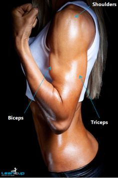 Amazing arms require the development of the biceps, triceps, AND shoulders – combining all three creates a curvy, well-defined, muscular look and completes the picture. Use these exercises to help get you there.