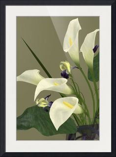 """""""Calla Lily Deco Set 3D Model"""" by Andre Price, Laurel, Maryland // An artistic portrayal of the beauty of the Calla Lily, an elegant white flower with a protruding yellow stamen for a center piece. // Imagekind.com -- Buy stunning fine art prints, framed prints and canvas prints directly from independent working artists and photographers."""