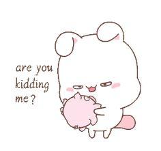 Cartoon Gifs, Cartoon Drawings, Animated Emojis, Bear Gif, S8 Wallpaper, Cute Piglets, Cute Phrases, Chibi Cat, Anime Zodiac