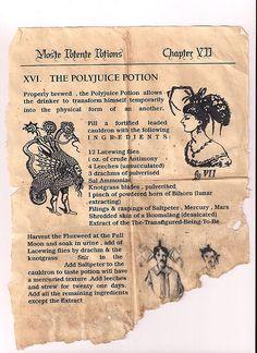 Harry Potter Party - Polyjuice Potion