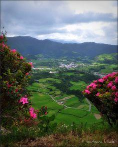 São Miguel - Azores, Portugal