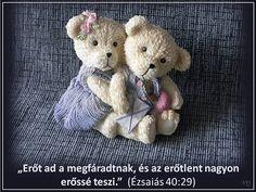 Teddy Bear, Animals, Animales, Animaux, Teddybear, Animais, Animal