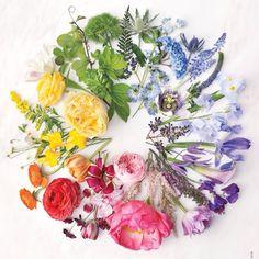 #bouquet #colorwheel #fourseasons