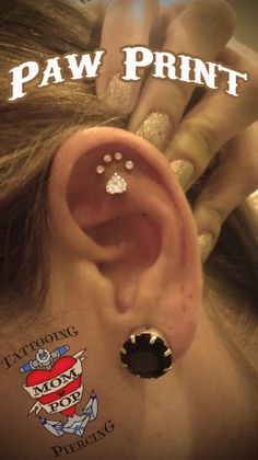 Thinking of doing the paw print piercing soon.