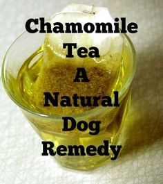 Chamomile Tea A Natural Dog Remedy Chamomile tea can be used to treat a variety of symptoms including upset stomach & itchy skin...