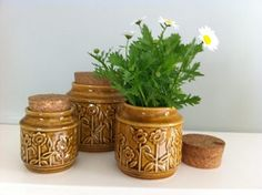 Crown lynn ceramic canisters for sale on Trade Me, New Zealand's auction and classifieds website Canister Sets, Canisters, Vintage Crockery, Honey Glaze, Old And New, Kitchenware, Art Deco, Pottery, Crown