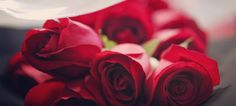Get Radiant and Flawless skin with this amazing Rose face packs