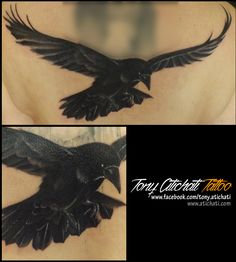 Crow tattoo. Back in process