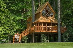 The Canopy Cathedral treehouse, Longwood Gardens, Pennsylvania. Building A Treehouse, Treehouse Living, Cool Tree Houses, Small Houses, Tiny House, Longwood Gardens, Construction, Tree Tops, In The Tree