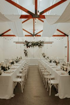 Ivy & Bleu Events Best Wedding Planners in Molendinar | Wedding Chicks
