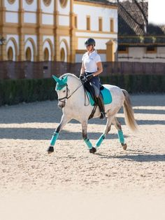 Vibrant and stunning Lemieux dressage matchy set in Turquoise. Includes matching fly veil, dressage saddle cloth and bandages all for just Equestrian Boots, Equestrian Outfits, Equestrian Style, Dressage Saddle, Horse Tack, Dressage Horses, Comida De Halloween Ideas, Horse Riding Clothes, Horse Riding Outfits