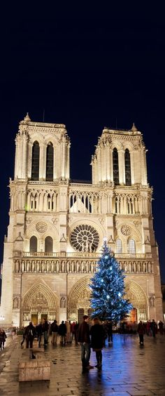 Notre Dame Cathedral in Paris, France | 25 Impressive photos of Christmas celebrations around the World. #17 Is Awesome!