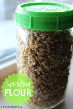 How to Make Sprouted Wheat. You'll Need: Wheat berries, glass jars with sprouting lids, dehydrator, and flour mill. Thm Recipes, Raw Food Recipes, Cooking Recipes, Healthy Recipes, Flour Recipes, Drink Recipes, Cooking Tips, Sprouted Grain Bread, Sprout Recipes