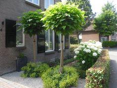 Adorable Wooden Garden Planters Ideas to Start Right away – Gardening Decor Love Garden, Shade Garden, Garden Trees, Balcony Garden, Garden Sitting Areas, Wooden Garden Planters, Lawn And Landscape, Garden Entrance, Garden Animals