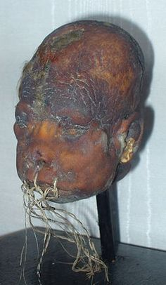 Shrunken head - Wikipedia, the free encyclopedia