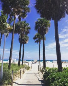 Lass das Wochenende beginnen und ab an den Strand! @delanobeachclub #SoMiami #VisitMiami #LoveFL #MiamiBeach #SouthBeach #TGIF #HappyWeekend #travelgram #instatravel