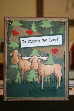 TLC360, Moose Love  by Pam MacKay