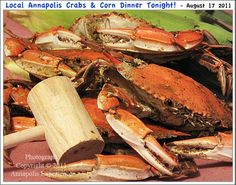 HOME!!!  An image of Maryland Blue Crabs that have been steamed and some locally grown corn for a dinner here in Annapolis Maryland. Photograph taken on August 17th 2011. To see a full size version of this photograph, as well as the accompanying Annapolis Experience Blog article, please click through on the Pinterest images for it. Copyright © 2012 Annapolis Experience