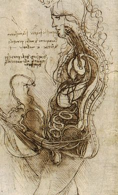 Leonardo da Vinci - Coition of a Hemisected Man and Woman, study