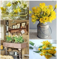 daffies in a bucket! daffies in a mason jar  :)
