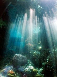 Paradijs onder water bewonderen - Coral reef diving in Indonesia!
