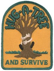 Girl Scout Troop, Cub Scouts, Girl Scouts, Girl Scout Activities, List Of Activities, Beaver Scouts, Some Games, Search And Rescue, I Survived