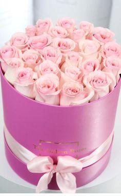 the.billion.roses