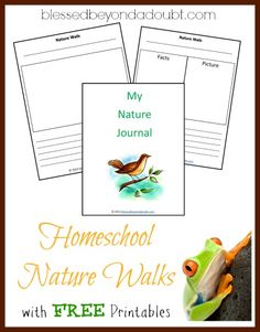 Enjoying Simple Homeschool Nature Walks with FREE Printables!