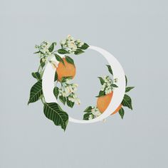 Exploring the fascinating range of edible flowers, this illustrated alphabet combines strong typography with delicate gouache artwork. Illustration Simple, Graphic Design Illustration, Floral Illustrations, Typography Inspiration, Graphic Design Inspiration, Flower Graphic Design, Christmas Graphic Design, Graphisches Design, Logo Design