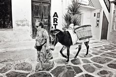 Donkey in Mykonos by Nathalie Stravers Old Time Photos, Old Pictures, Blue Angels, Donkeys, Crete, Mykonos, Deep Blue, The Locals, Affair