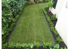 Garden Design Auckland, New Lawn Design Garden Ideas North Shore