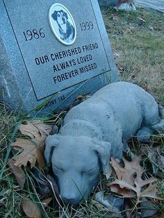 cemetery, grave, headstone Sleeping by Scaramouche!, via Flickr