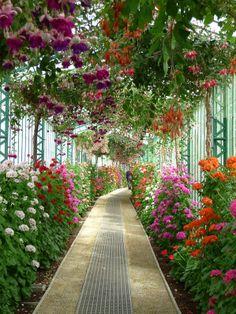 Visit to the royal greenhouses of Laeken (Belgium) - Botanical Gardens Trend Most Beautiful Gardens, Beautiful Flowers Garden, Beautiful Places, Flowers Nature, Beautiful Landscape Wallpaper, Beautiful Landscapes, Landscape Design, Garden Design, Dream Garden
